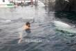 Berinteraksi dengan hiu paus, di Tanjung Bicari, Kaimana (dok IF)