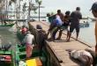 Tangkapan ikan kerapu yang melimpah, di Kaimana