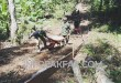 Pembuatan jalan kampung sepanjang 350 meter dengan lebar 3 meter, terus dikebut pembangunannya